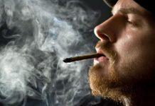 الماريجوانا